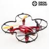 Droonid