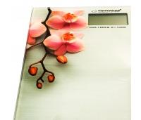 Digitaalne vannitoakaal Orchid