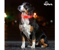 LED-tulega kaelarihm koertele My Pet EZ