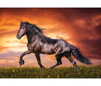 Hobune, must iludus puzzle 100 tk