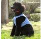 chaleco-refrescante-para-mascotas-medianas-innovagoods-m.jpg