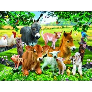 xxl-pieces-on-the-farmland-jigsaw-puzzle-300-pieces.80209-1.fs.jpg