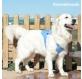 chaleco-refrescante-para-mascotas-grandes-innovagoods-l3.jpg