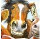 plastic-puzzle-howard-robinson-farm-selfie-jigsaw-puzzle-500-pieces.80559-2.fs.jpg